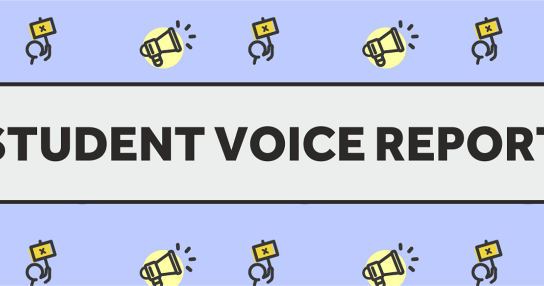 Student Voice Report